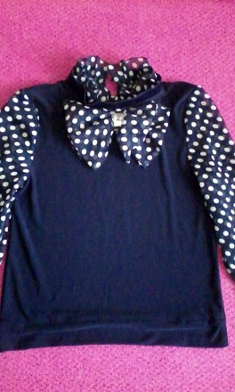 Блузка. Балаклея. фото 1