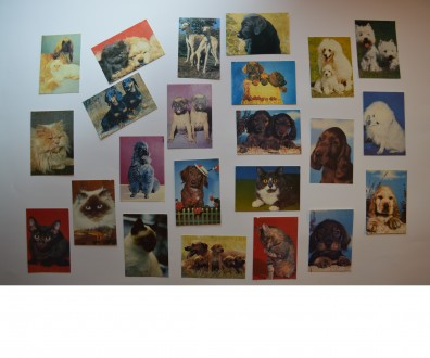 Календарики - собаки и кошки. (скидка до 50%) 1993 г.. Харьков. фото 1