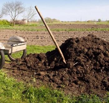 Коровячий навоз! Гной,Удобрение, Земля, Торфокрошка.. Чернигов. фото 1