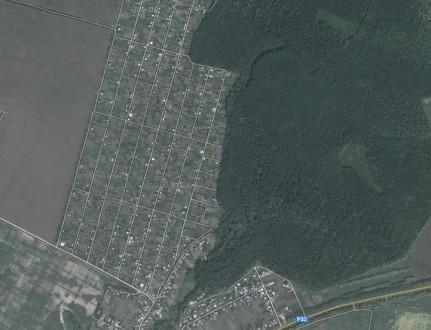 Дачна ділянка+вагончик під лісом та озером.Фурси.. Белая Церковь. фото 1