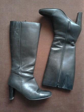 Классические кожаные демисезонные сапоги, 37 размер по стельке 23.5 см. Вверх хо. Кривой Рог, Днепропетровская область. фото 2