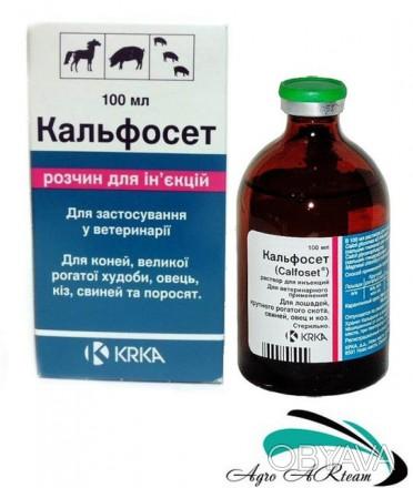 Склад: Кальфосет® в 100 мл містить в якості діючих речовин кальцію глюконат -32,. Львов, Львовская область. фото 1