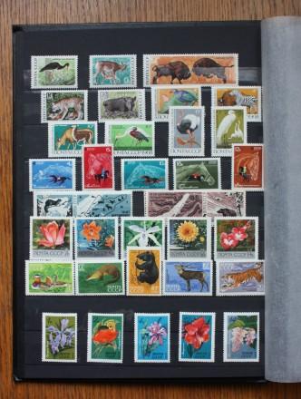 Соберем под заказ тематические коллекции почтовых марок СССР и Украины любого пе. Киев, Киевская область. фото 7