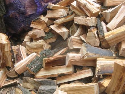 Дрова для мангала  твердых пород в сетках .. Киев. фото 1
