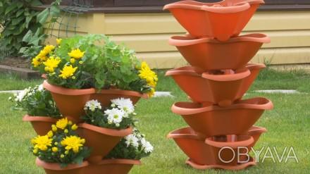 Семена Саженцы Наборы для выращивания зелени Клубника Томаты Цветы