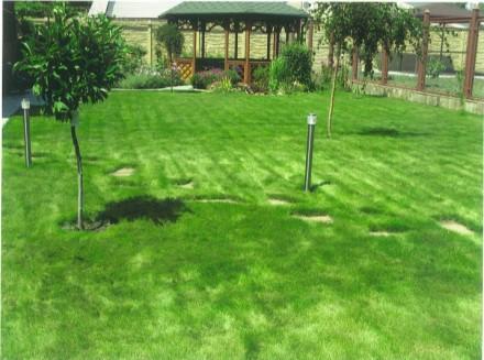 Ландшафтный дизайн, озеленение, газоны, рокарий, альпинарий. Запорожье. фото 1
