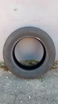 Летняя шина 185/60 R14 MATADOR stella 2, МР-16,  1 шт. Протектор шины видно на ф. Киев, Киевская область. фото 2