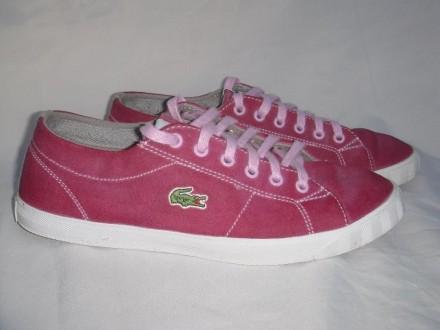 Кроссовки LACOSTE, кожаные р.38-39 женские девочке кеды туфли мокасины. Днепр. фото 1