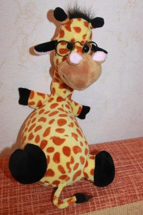 Веселый и умный жирафик. Запорожье. фото 1