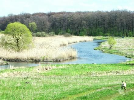 Ви хочете побудувати свій будинок в тихому затишному місці над річкою поруч з лі. Стрижавка, Вінницька область. фото 9