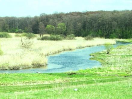 Ви хочете побудувати свій будинок в тихому затишному місці над річкою поруч з лі. Стрижавка, Вінницька область. фото 2