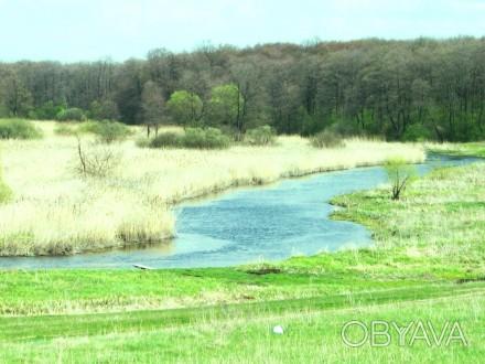 Ви хочете побудувати свій будинок в тихому затишному місці над річкою поруч з лі. Стрижавка, Вінницька область. фото 1