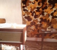 будинок з усіма комунікаціями.. Димер, Київська область. фото 2