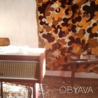 будинок з усіма комунікаціями.. Димер, Київська область. фото 1