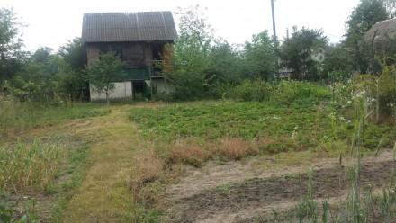 Продам дачу, 6-ть соток, вода, столбы с электричеством. Дом с подвалом на первом. ЗАЗ, Чернигов, Черниговская область. фото 7