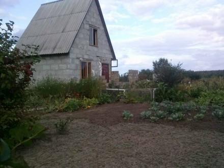 Продам дачу Новоукраїнка з документами на будинок і землю,е світло,скважина,коло. Нова́ Украї́нка, Рівненська область. фото 5