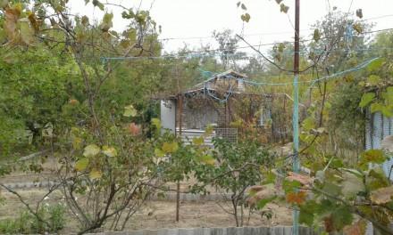 Дача, за Коханами, домик 3 комнаты, кухня 9 м.кв, гараж, заезд для авто, помпа, . Кардашинка, Херсонська область. фото 4