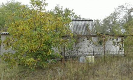 Дача, за Коханами, домик 3 комнаты, кухня 9 м.кв, гараж, заезд для авто, помпа, . Кардашинка, Херсонська область. фото 7
