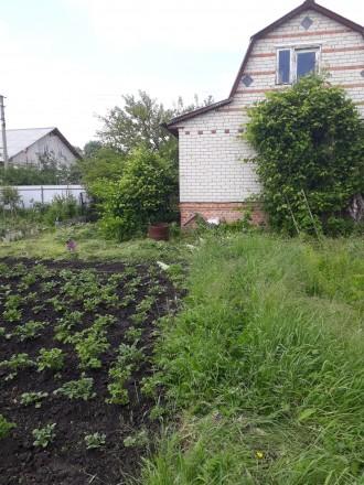 Приватизированая дача в черте города.. Чернигов. фото 1