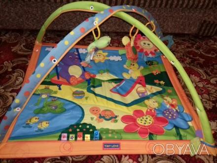 Развивающий коврик в отличном состоянии.Все игрушки на месте,все исправно.Имеетс. Акимовка, Запорожская область. фото 1