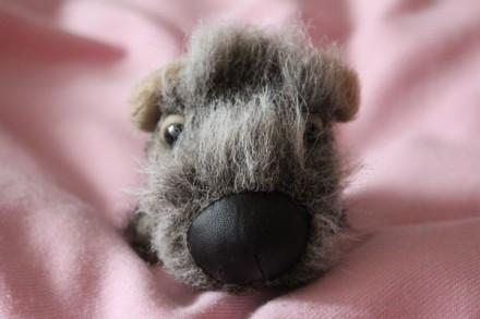 Мягкая игрушка собака фирменная. Киев. фото 1