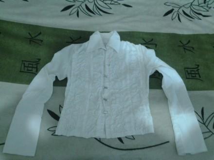 Белые блузки и кофты.. Чаплинка. фото 1