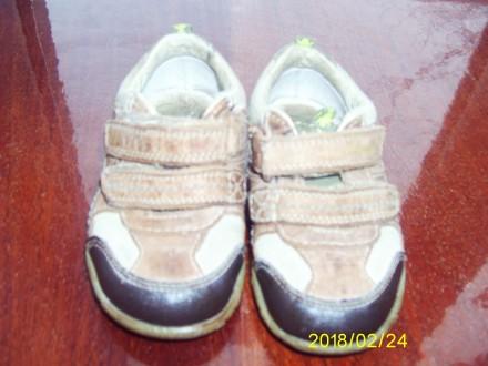 Кроссовки - ботинки весна-осень Clarks. Лубни. фото 1