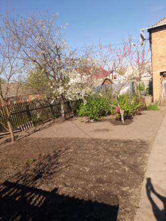Продам дом в Киевской области. Богуслав. фото 1