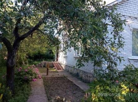 Продаж будинку на Посьолку, загальна площа становить- 98 кв.м., квадратний участ. Белая Церковь, Киевская область. фото 3
