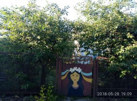 Продаж будинку на Посьолку, загальна площа становить- 98 кв.м., квадратний участ. Белая Церковь, Киевская область. фото 5