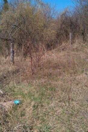 Продається дачна ділянка в Сухому Яру, загальна площа землі-12 соток, частина те. Белая Церковь, Киевская область. фото 5