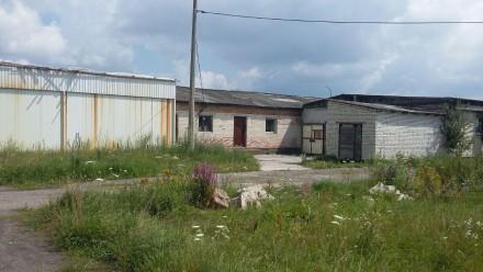 Продам приміщення 1100кв.м. в с.Олександрія. Рівне. фото 1