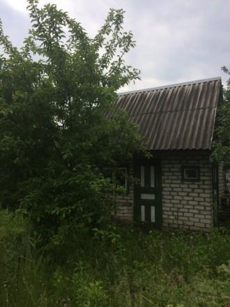 Дача на заводях у леса. Кременчуг. фото 1