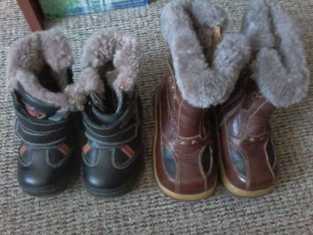 Сапожки зимние кожаные. Белополье. фото 1