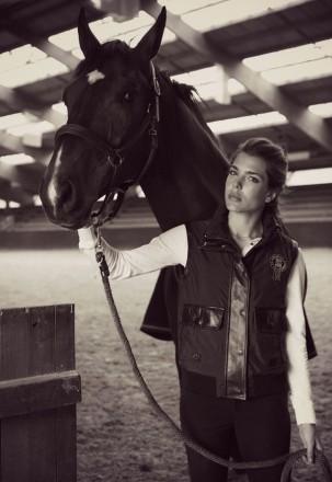 Постой лошадей, аренда денников. Чернигов. фото 1
