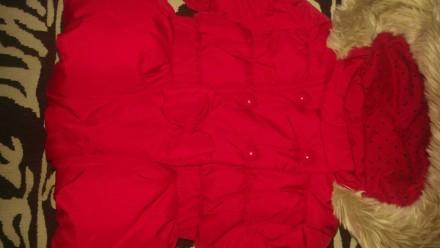 Куртка Next. Александрия. фото 1