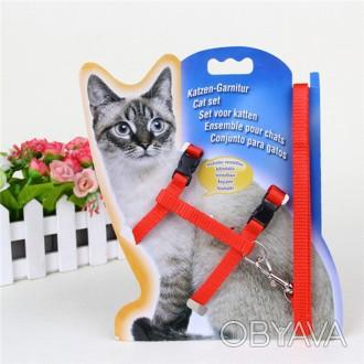 Шлейка для кошки,щенка или собачки небольшой породы. Длинна поводка 120см,ширин. Суми, Сумська область. фото 1