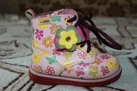 Ботинки кожа L.Deer. Тернополь. фото 1