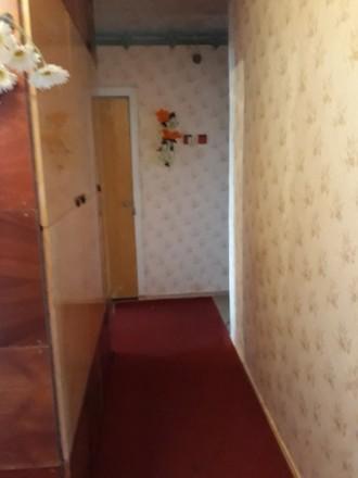Сдам квартиру с сентября по май.. Бердянск. фото 1