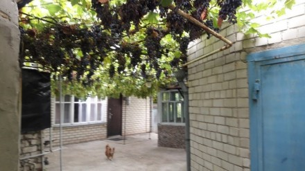 Продам дом в Каховке, возле Днепра.. Каховка. фото 1