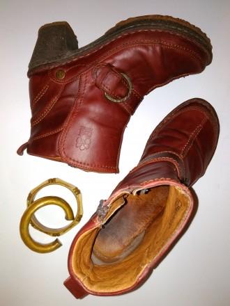 Ботинки полусапоги Josef Seibel 39 высокоэкологичная обувь. Харьков. фото 1
