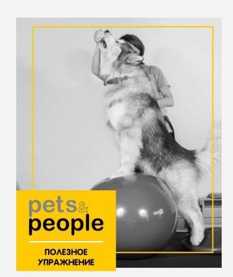 Школа взаимопонимания с животными Pets&People. Київ. фото 1