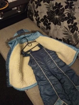 Зимний комбинезон, хорошее состояние. Замеры: длина куртки 53 см, длина рукава 4. Чернигов, Черниговская область. фото 6