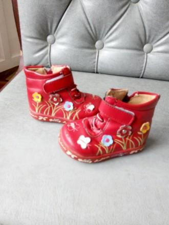 Ботиночки для девочки. Александрия. фото 1